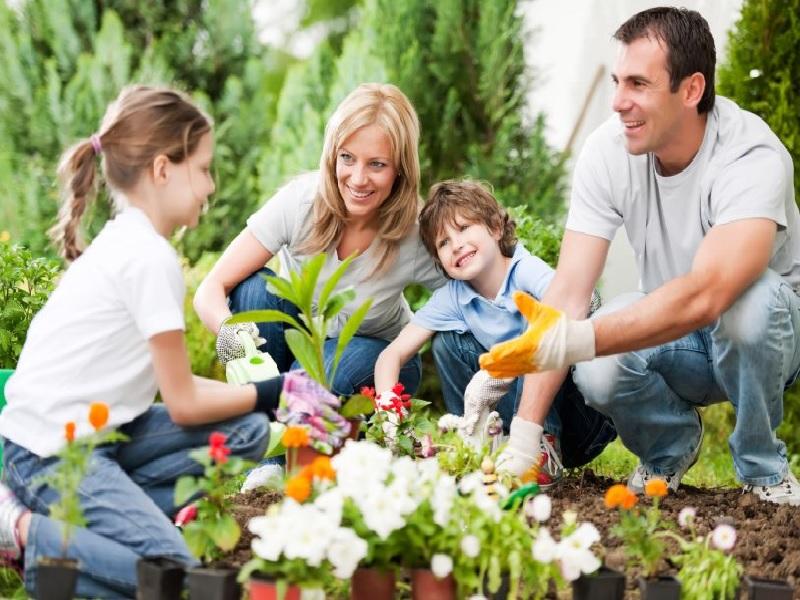 Manfaatnya Berkebun Bagi Keluarga Untuk Kesehatan Fisik dan Mental