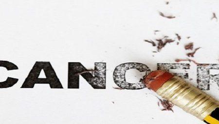15 Makanan Anti Kanker yang Perlu Anda Ketahui