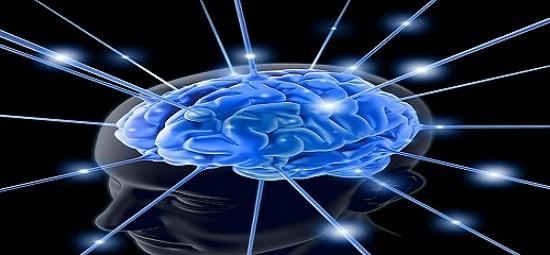 5 Tips Memiliki Otak Sehat