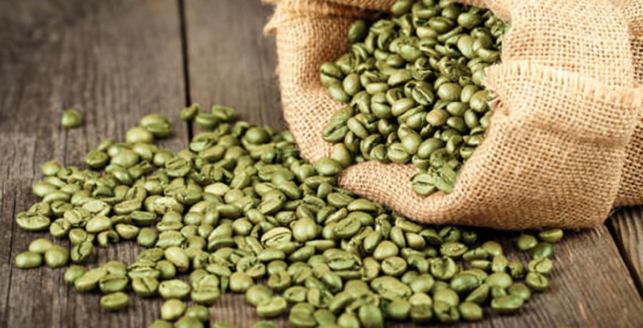 Kopi hijau, varian kopi terbaru pembakar lemak tercepat