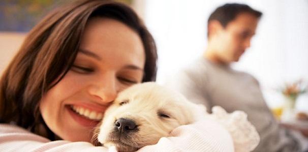 Manfaat Memelihara Hewan Untuk Kesehatan