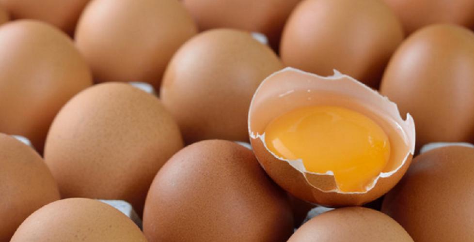 Makan telur mentah, baik atau buruk untuk kesehatan?