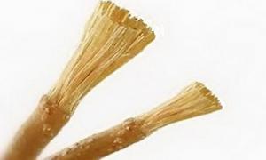 Cara Membuat Gigi Tetap Putih Bagi Penikmat Kopi