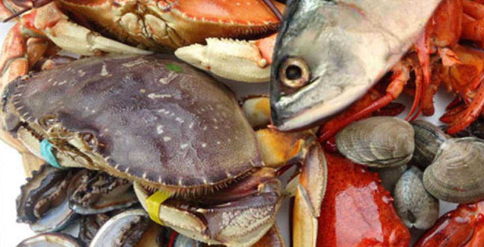 Jangan terbuai, 5 makanan laut ini sembunyikan bahaya buat tubuh