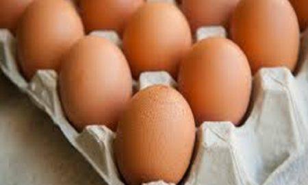 Alasan Mengapa Anda Harus Sering Makan Telur