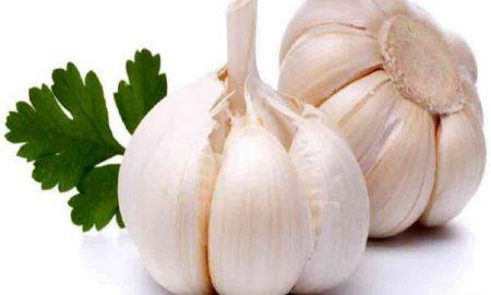 Manfaat Bawang Putih Sebagai Obat Herbal Tradisional