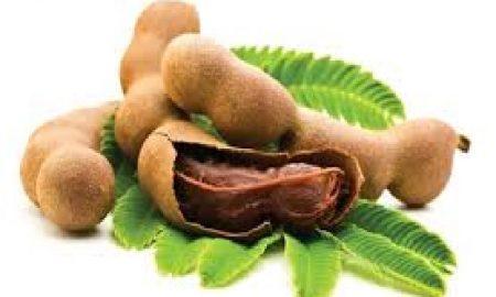 Apa Manfaat Herbal Asam Jawa
