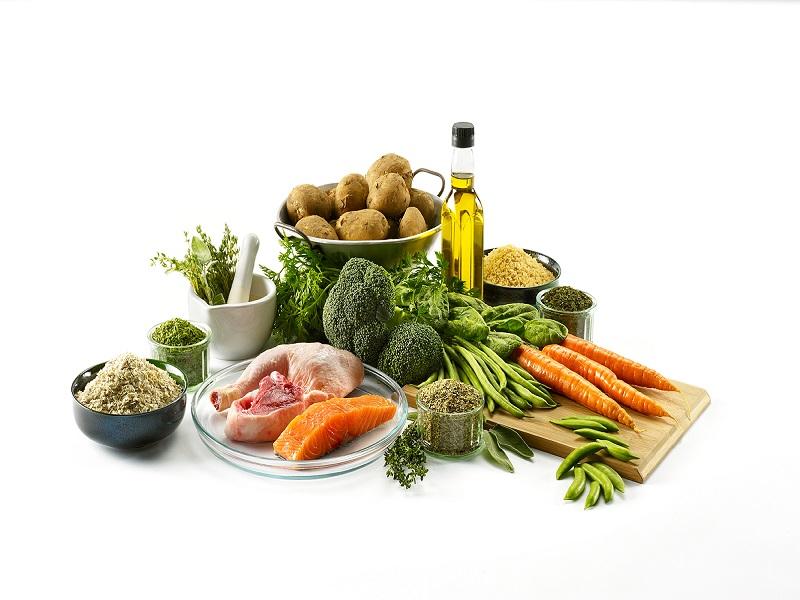 Herbal Pilihan untuk Mengatasi Berbagai Penyakit Berat