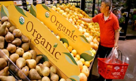 Mengapa Anda Harus Mengkonsumsi Makanan Organik