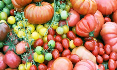 Peringatan : Jangan Simpan Makanan Sehat ini Di Kulkas