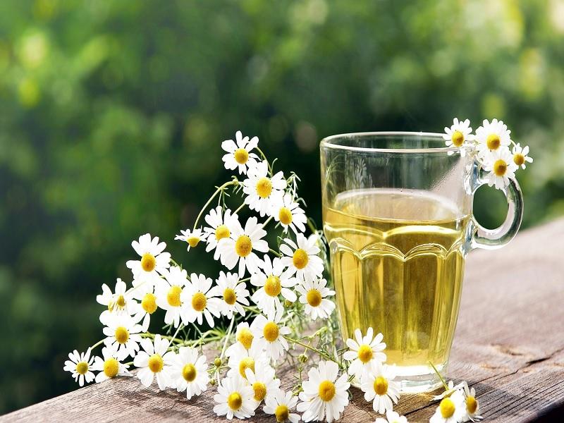Bunga yang BisaMembuat Anda Cantik, Segar dan Wangi