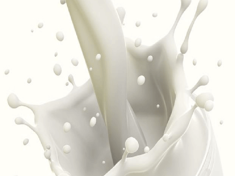 Kebaikan susu bagi tubuh