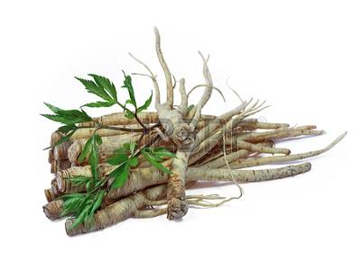 Manfaat Herbal Dong Quai untuk Kesehatan.2