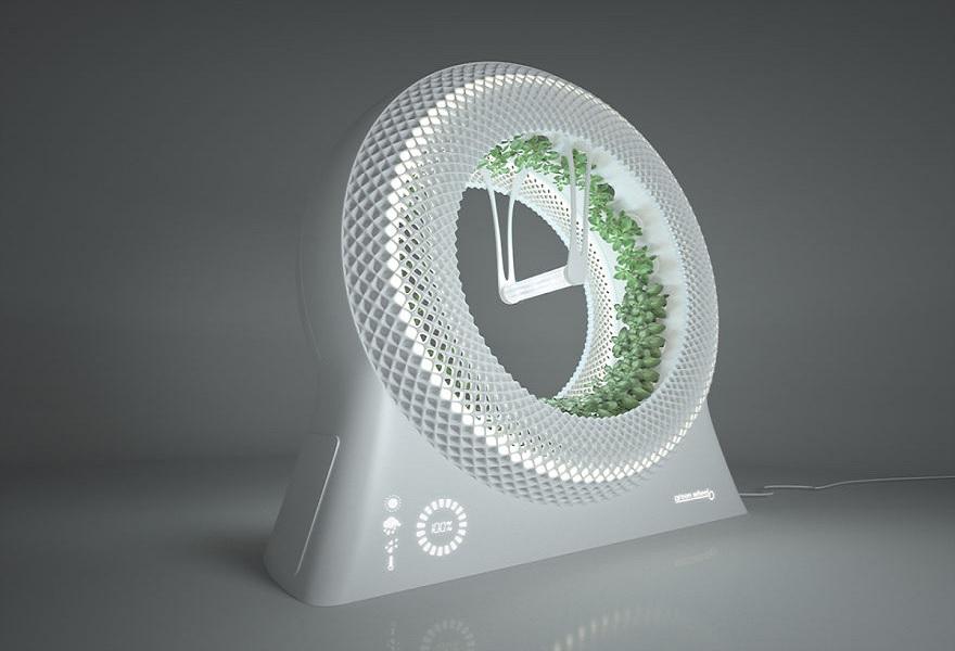 ide menanam herbal sehat di dapur mungil