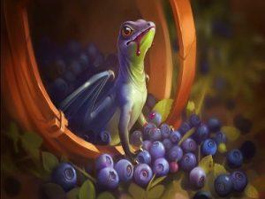 buah berry yang penting untuk kesehatan tubuh