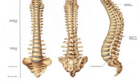 gejala gangguan tulang belakang