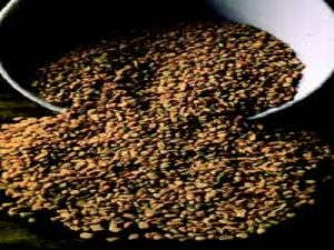 herbal untuk mencegah sembelit saat puasa