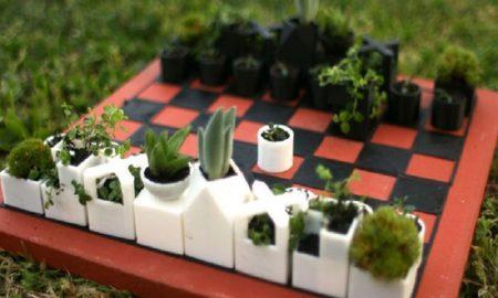 herbal yang mudah ditaman di pot kecil