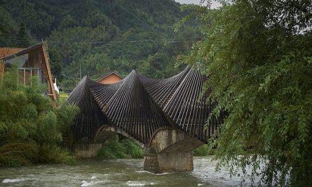 pertimbangan untuk membuat rumah dari bambu