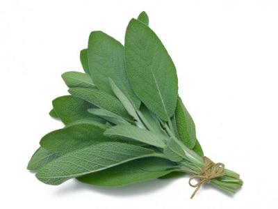 herbal dengan vitamin B tinggi untuk puasa