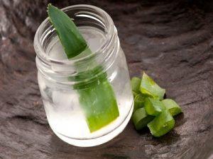 herbal yang bisa mengatasi maag saat puasa