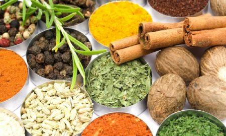 herbal yang mencegah tubuh sakit saat puasa