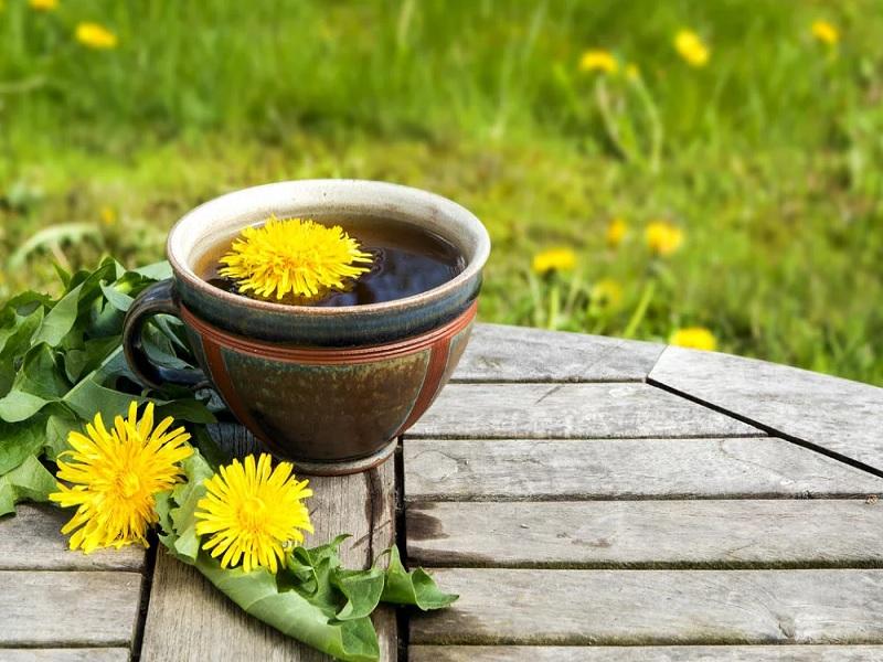 herbal yang menghilangkan lemak tubuh dengan cepat