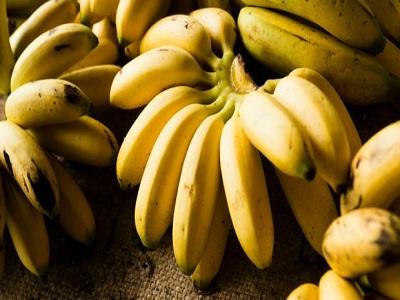 sumber karbohidrat sehat untuk buka dan sahur