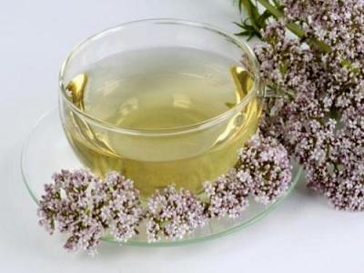 teh diet untuk penderita obesitas parah