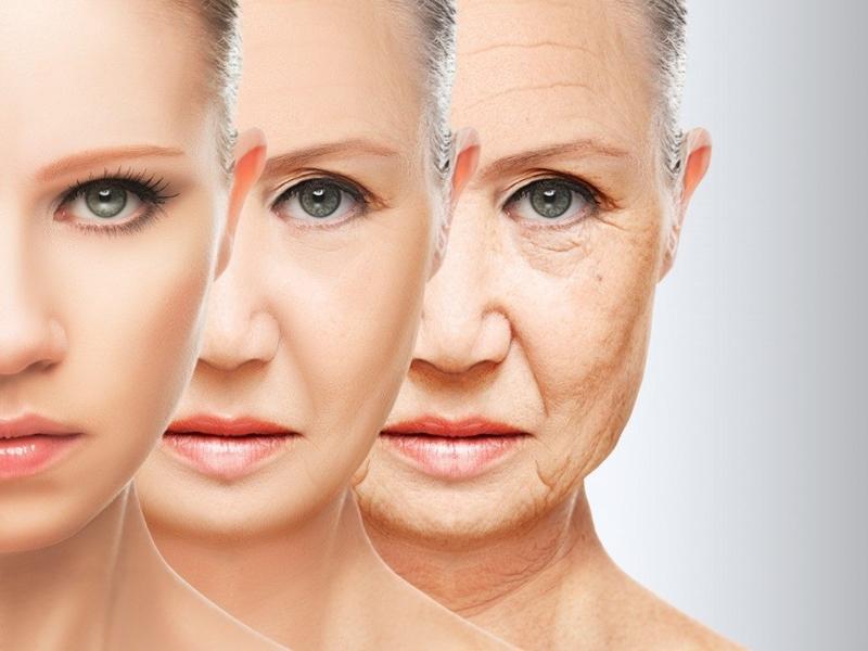 Menu Pencegah Penuaaan Kulit