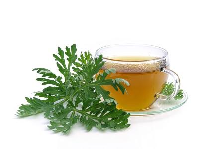 herbal daun kenikir sebagai obat dan sayuran