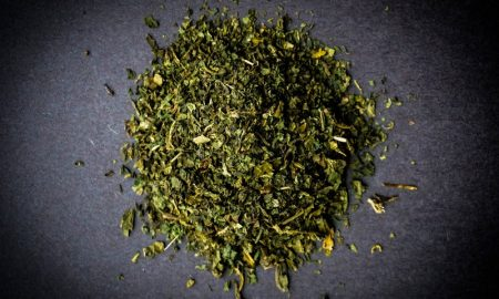 herbal menyehatkan untuk mendukung kegiatan olahraga Anda
