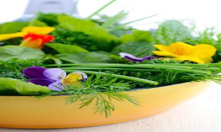 herbal untuk merawat kecantikan dan masalah kulit