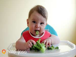 makanan paling sehat untuk pertumbuhan bayi