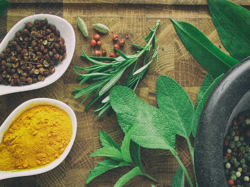 herbal terkenal untuk menyembuhkan wasir