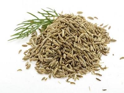 ada herbal menyehatkan untuk masakan bersantan
