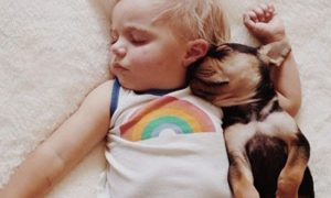 manfaat-mengenalkan-anak-pada-binatang