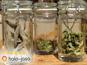 Punya Stok Herbal Daun Kering?