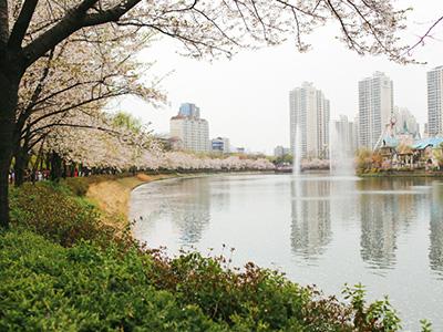 danau-korea