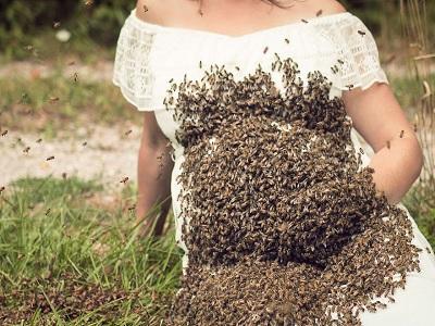 efek kesehatan ibu hamil yang disengat lebah