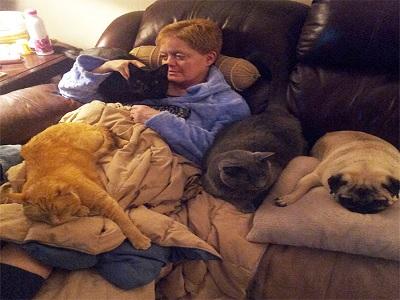 fakta resiko tidur dengan binatang
