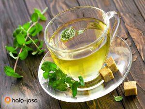 Herbal Obat Sakit Perut Anak