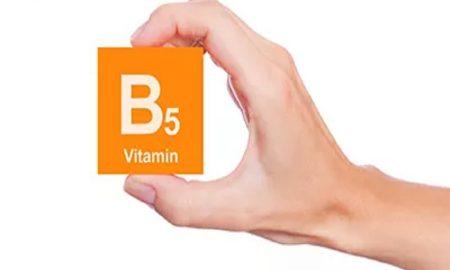 makanan sumber vitamin B5 tertinggi
