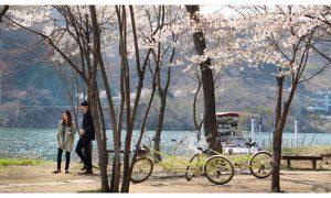 wajib tahu tempat-tempat romantis di Korea