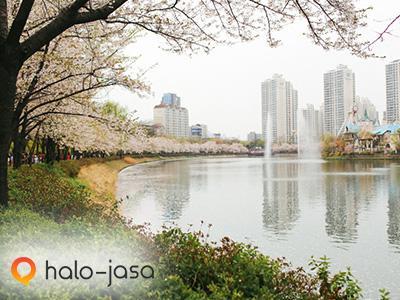 tempat-tempat romantis di Korea