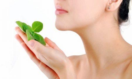 tips menggunakan daun mint untuk menjaga kecantikan